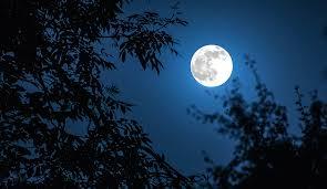 blue moon 2020 india