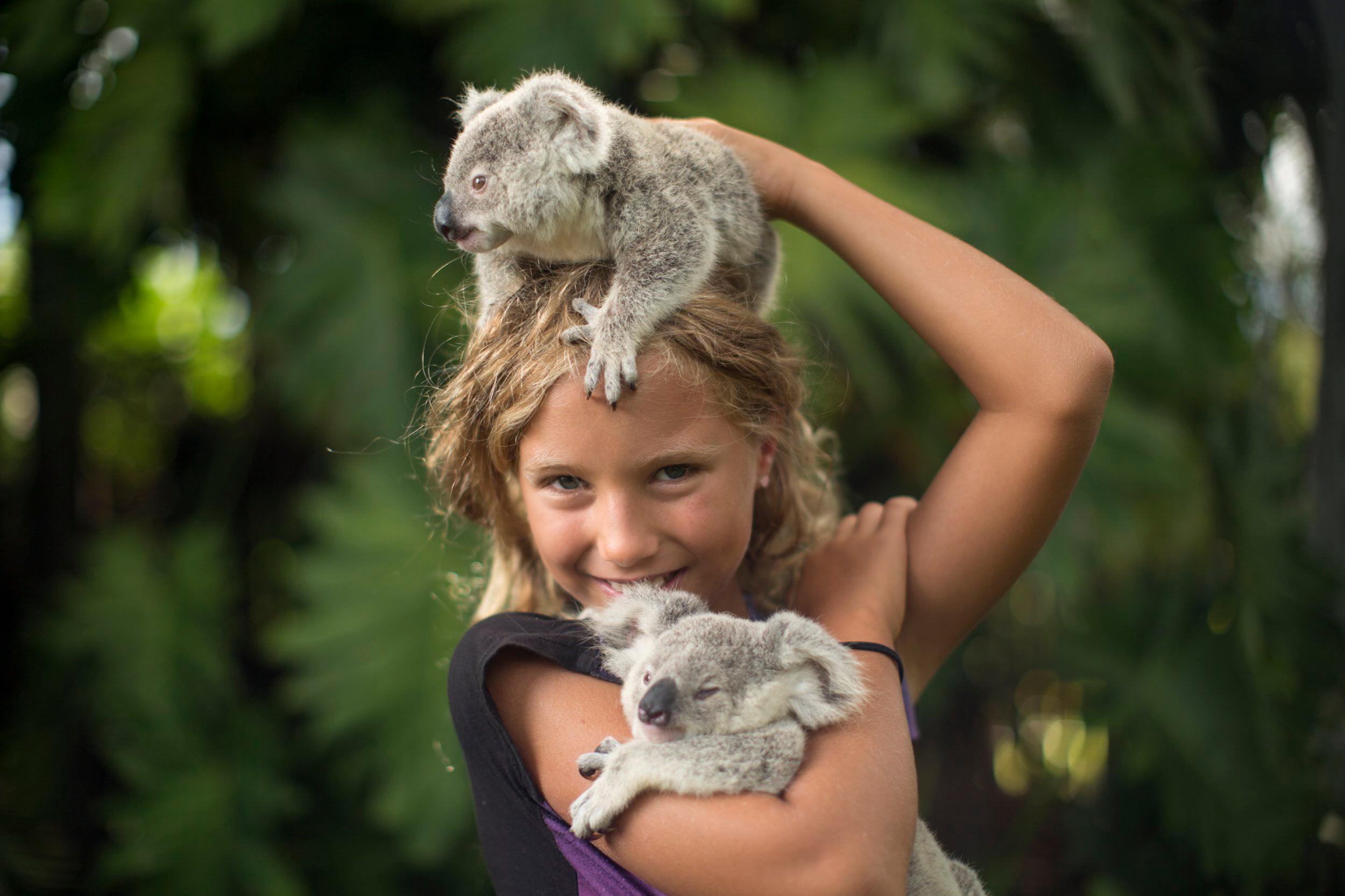 Izzy's Koala World Season 2 Release Date